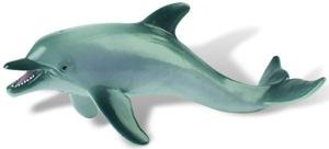 Picture of Delfin