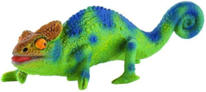 Picture of Cameleon