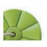 Picture of Leagan rotund din plastic, Monkey PP10 - Lime Green