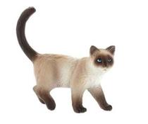 Imaginea Pisica siameza Kimmy
