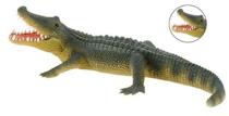 Imaginea Aligator