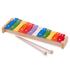Picture of Xilofon Metallophone - 12 note colorate